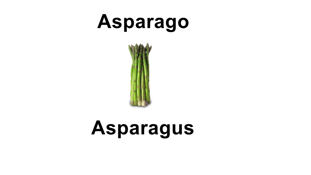 Names of vegetables - asparago