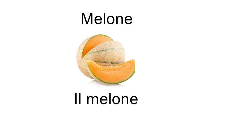 Names of fruits Melone