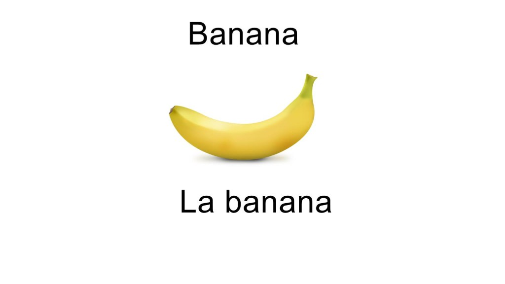 Names of fruits la banana