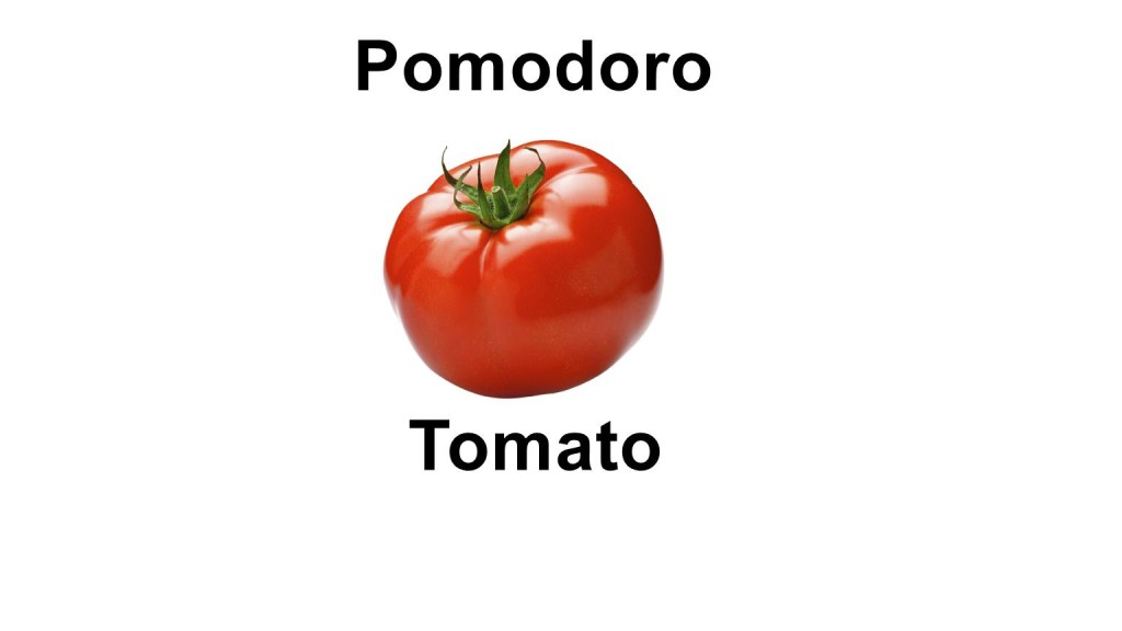 Names of vegetables - tomato