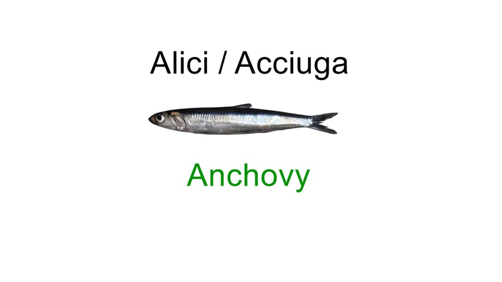 italian names - fishes