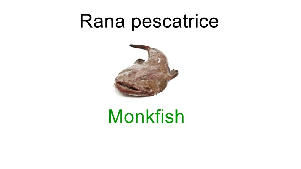 names of fishes in italian